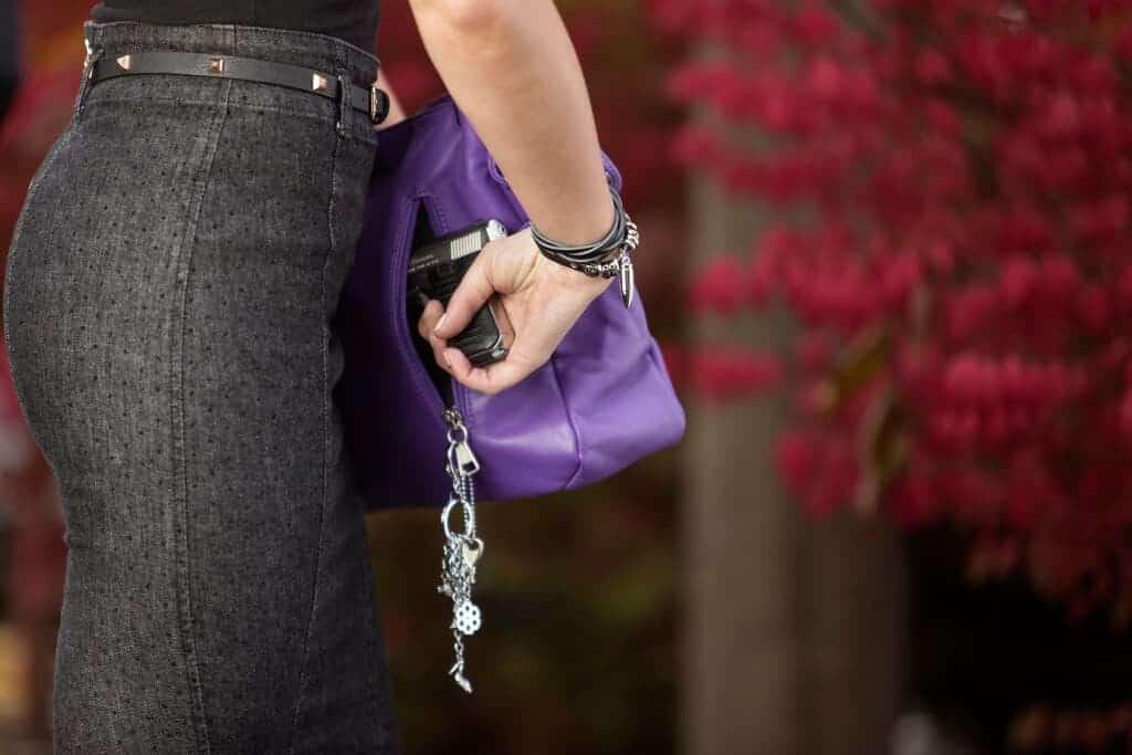 Aurora Concealed Carry Handbag Draw Gun