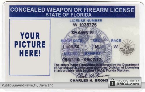 Florida's Concealed Carry Weapons Permit Fast Track Process Could Spread To Other States